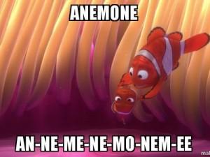 anemone-annemenemonemee-500x375c